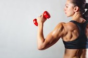 Organize a Workout Regimen