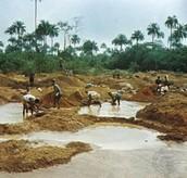 Sierra Leone Water