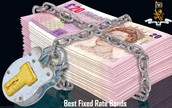 Lock your money with fixed rate bonds for future savings