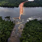 Amazon Hydro-electric Deforesta-tion