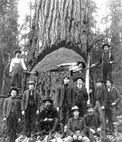 Minnesota Lumberjacks
