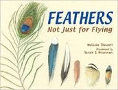 Feathers: Not Just for Flying by Melissa Stewart