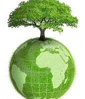 ¿Como salvar nuestro planeta?