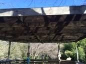 Canopy #2