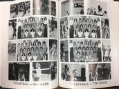 Vball in '82-'83