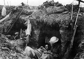 Life in the trench