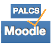 What to submit in Moodle?