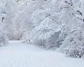Rare snowfall in Maycomb