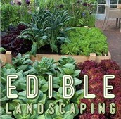 TRY EDIBLE LANDSCAPING