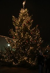 Kickoff the holiday season in downtown Medford!