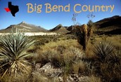 Big bend Texas
