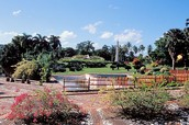 Moscoso National Botanical Gardens