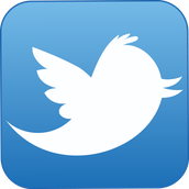 Tweet on Tuesdays!