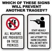 Pro Gun