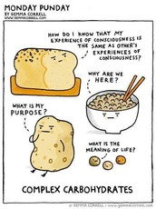What are complex carbs?