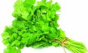 Yo echo el cilantro los utilizo para la salsa