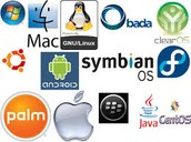 Operating System (OS)/ Other Software