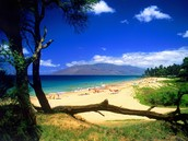 Hawaii(Maui)