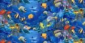 Areas and Wildlife that are affected by the Death of Coral Reefs