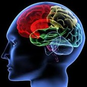 What Is a Psychological Disorder?