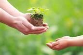 Notre développement durable