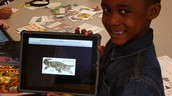 Using an IPad to search for animals