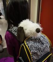 Stuffie Fundraiser