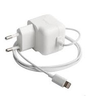 The iphone charger