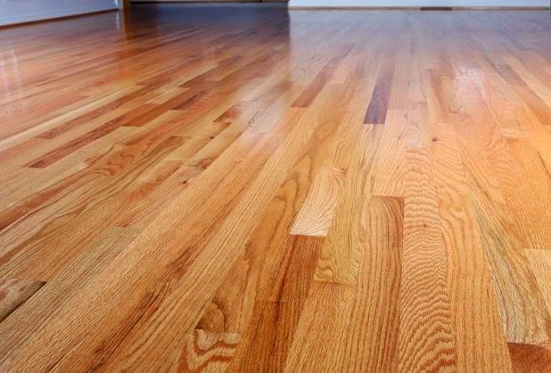 tigerwood flooring article