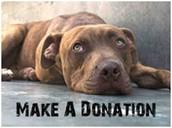 Junta fondos para los perros.