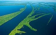Amazon River!