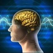 『右腦專注訓練』&『快速記憶法』