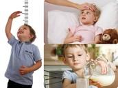 Necesidades físico-biológicas
