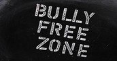 WE SHOULD ALWAYS HAVE A BULLY FREE ZONE