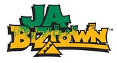 JA Biztown Field Trip - THIS WEDNESDAY