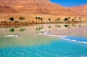 ים המלח- מקום מהנה ומיוחד במינו בעולם!!!!!