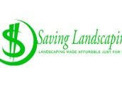 Saving Landscaping