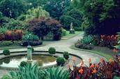 Royal Botonic Gardens