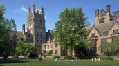 Top college in the country