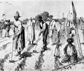 SLAVERY IN THE COLONIAL DAYS