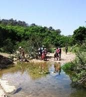 גן לאומי הר הכרמל
