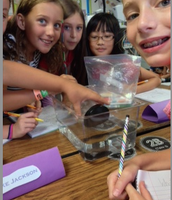 investigations in science