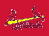 go to the cardnals game