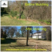A lot of mulching projects...