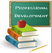 Professional Development Survey