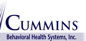 Cummins Behavioral Health Partnership for School Based Services