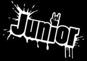 Junior Year: (2015-2016)