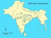 Sloth bears natural range