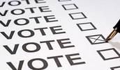 Bhind Voting
