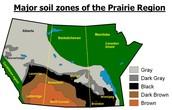 Soil Zones